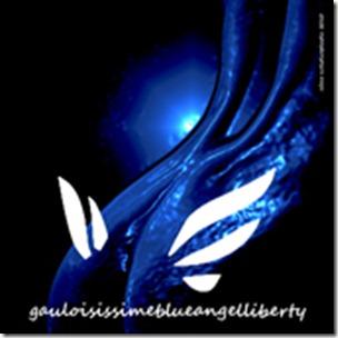 némo 2011 gauloises 001 72 dpi FACEBOOK
