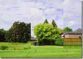 Landscape Permutations 3
